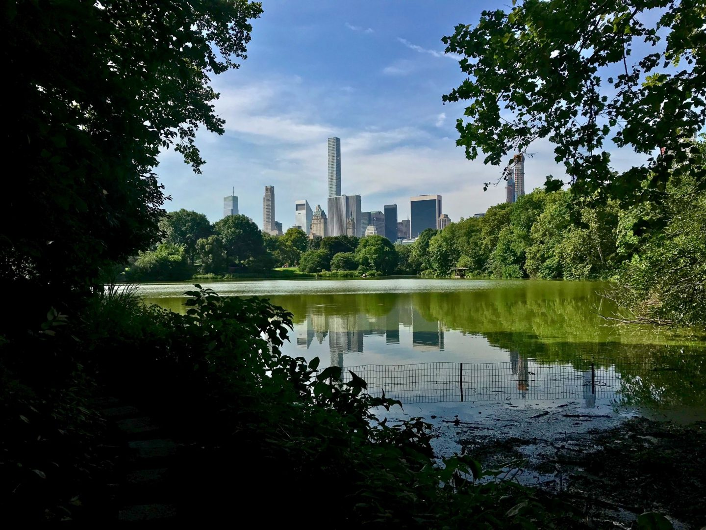 visit central park in new york